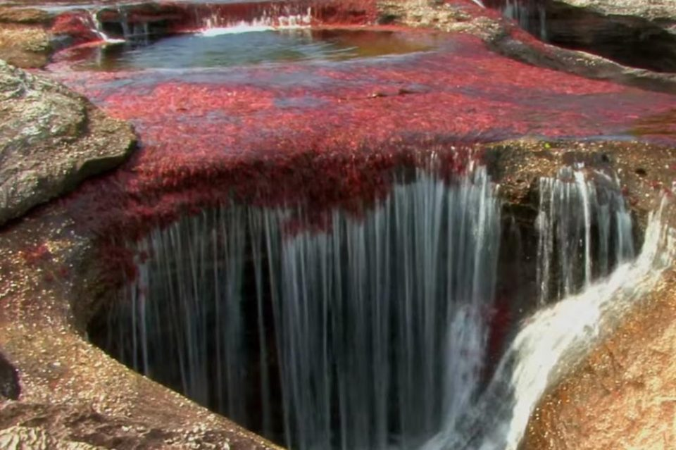 Најубавата река на светот, тече во пет бои