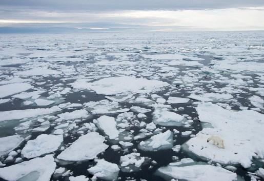 Погледнете како се топеше мразот на Артикот, од година во година (ВИДЕО)