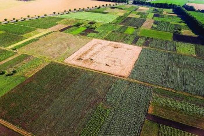 Ќе се дава под закуп земјоделско земјиште до три хектари