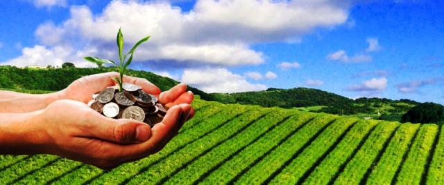 Се проверува каде завршуваат земјоделските субвенции, тврди директорот на Платежна