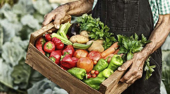 Пласманот, откупната цена и немањето преработувачки капацитети, клучни проблеми за земјоделците