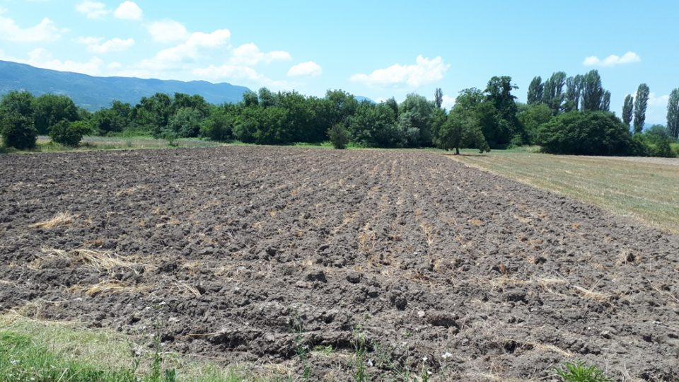 Субвенциите во земјоделството не ги даваат очекуваните резултати