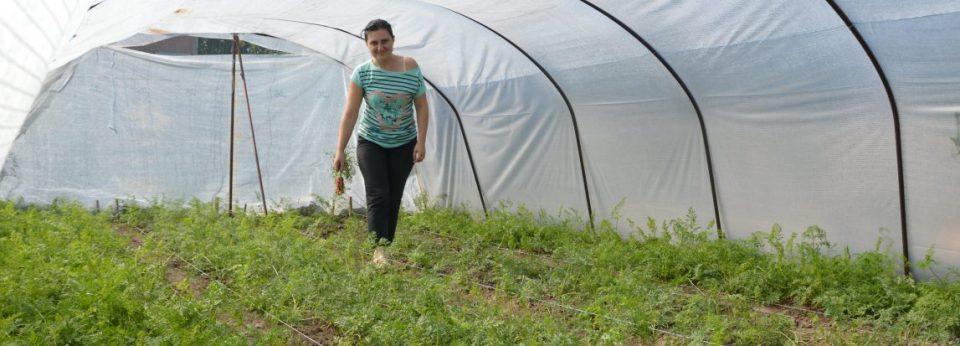 До три илјади евра неповратни средства за жените-фармери