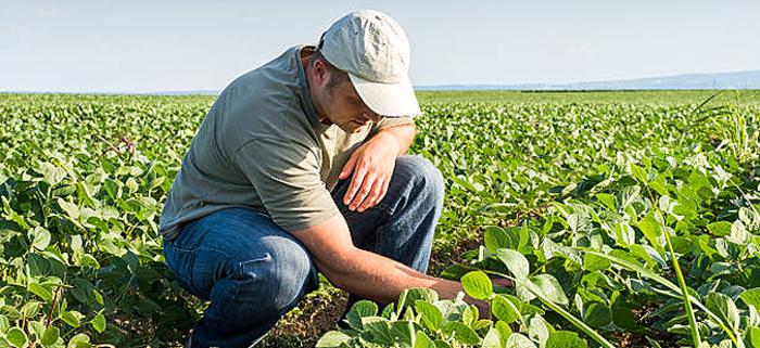 Левица: Владата по обичај земјоделците ги препушта на милост и немилост