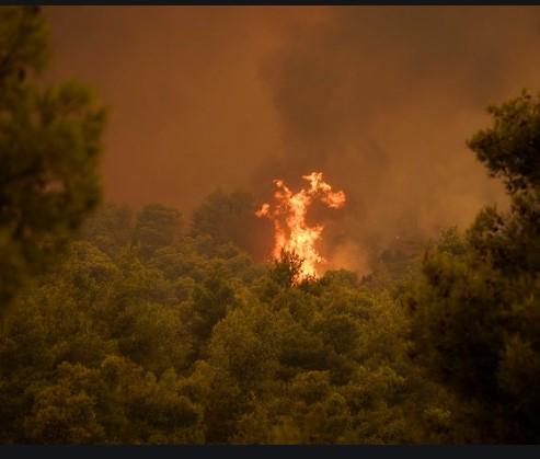 Синот на Бакојани вели дека пожарот на Евија е тежок за гаснење (ВИДЕО)