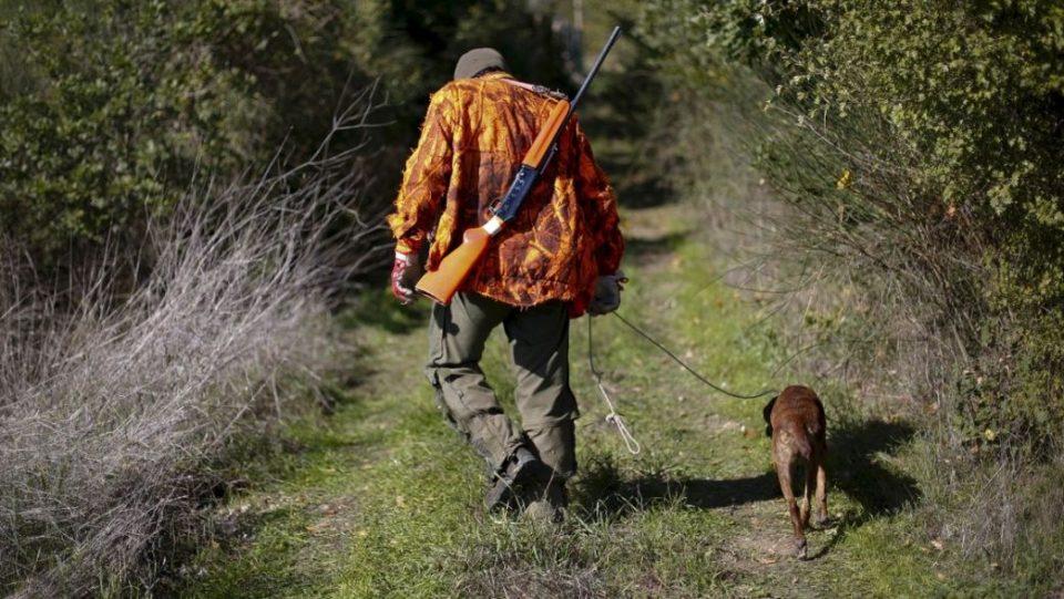 Ловците против вклучувањето на Армијата во отстрелот на диви свињи