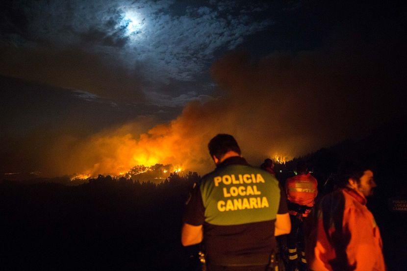 Силен пожар голтна неколку од Канарските острови, евакуирани 2 илјади луѓе