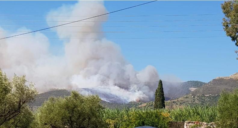 Пожарот на Закинтос дојде и до првите куќи (ФОТО)