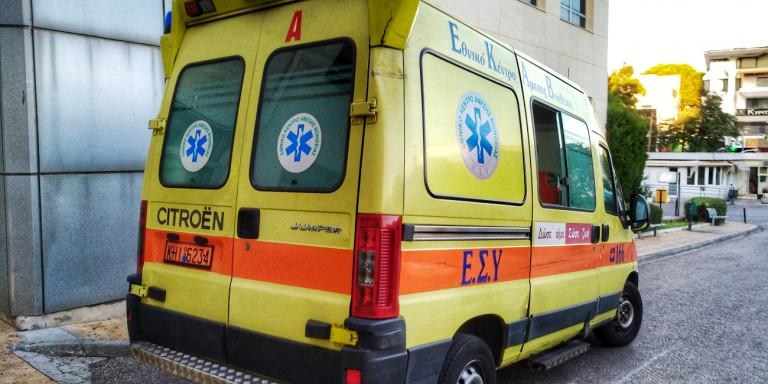 Ротфајлер изгриза до смрт тримесечно бебе во Грција