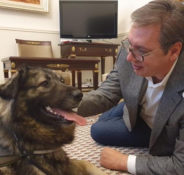 Пако беше најрадосен: Вучиќ се врати на работа (ФОТО)