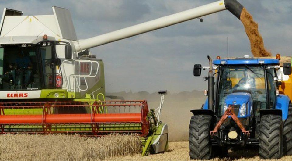Исплатени близу 17,4 милиони денари за субвенци за откупена пченица од домашно производство