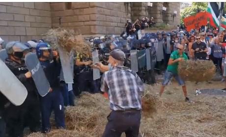 Бугарска работа: Со сено по полицијата (ВИДЕО)