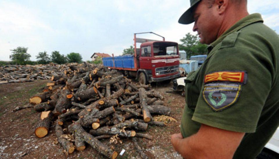 Двајца полицајци тешко повредени од дрвокрадци, приведени се 4 лица
