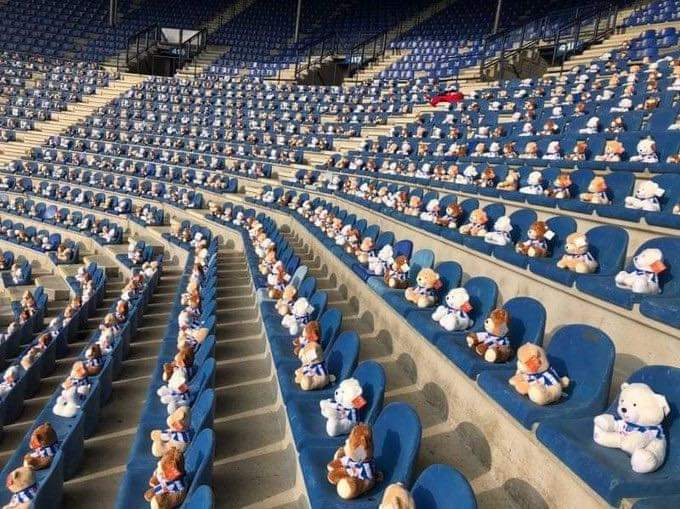Фудбалски клуб го наполни стадионот со 15.000 кадифени мечиња, а парите од продажбата се наменети за деца болни од канцер