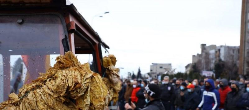 ВМРО-ДПМНЕ ќе забрани увоз на тутун дури не се откупи од домашното производство