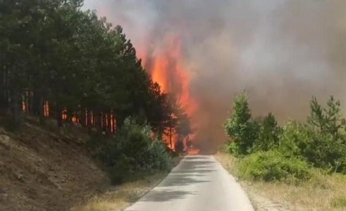 Прогласена кризна состојба поради пожарите, што тоа значи?