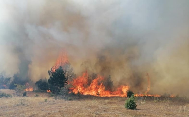 Малешевија во пламен (ВИДЕО)